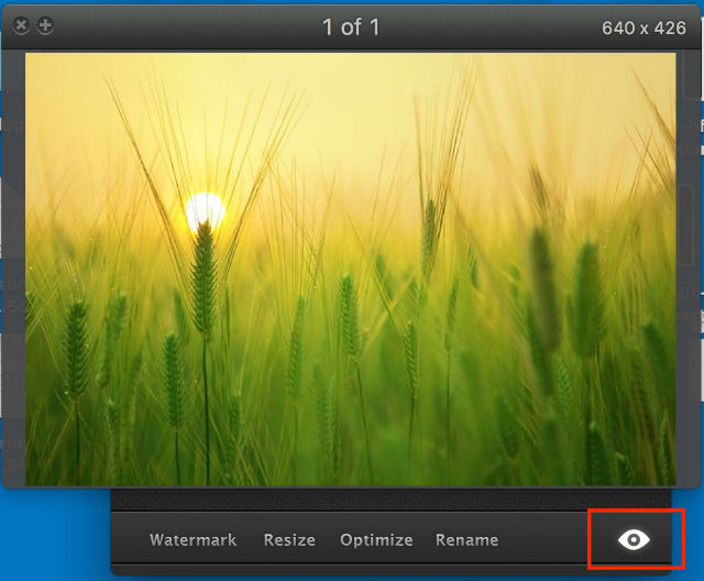 The Preview Function of PhotoBulk. Easily Accessible Via Eye Button.
