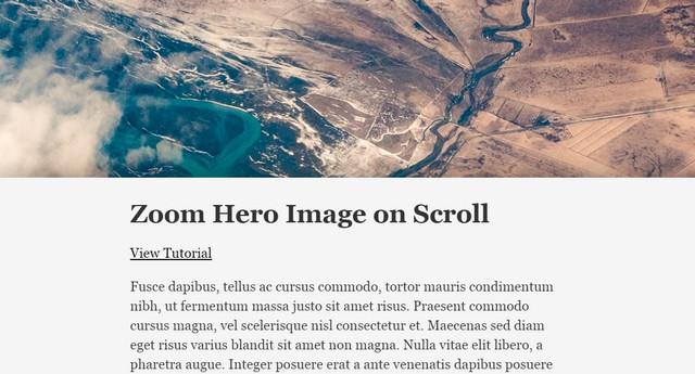 zoom-hero-image