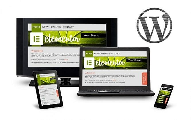 Elementor: This WordPress Page Builder is Your New Design