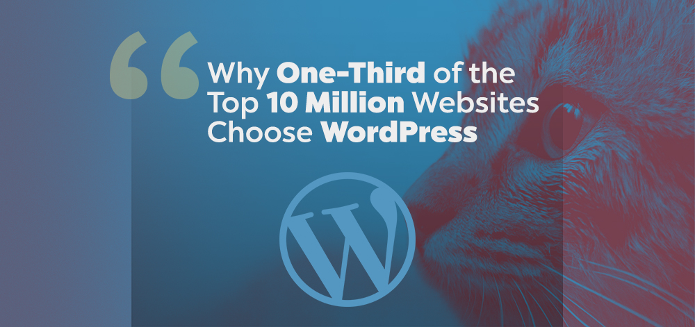 Why One-Third of the Top 10 Million Websites Choose WordPress?