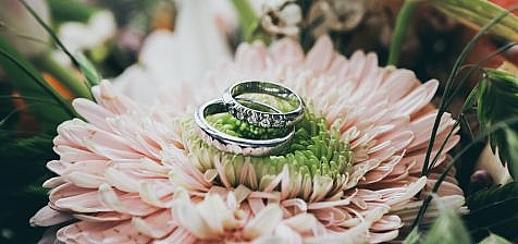 Two rings standing on a flower.