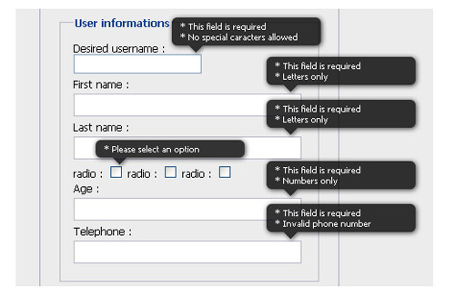 Tutorial on Inline Form Validation