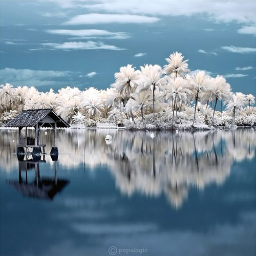 Fantasy Land in Infrared Photography