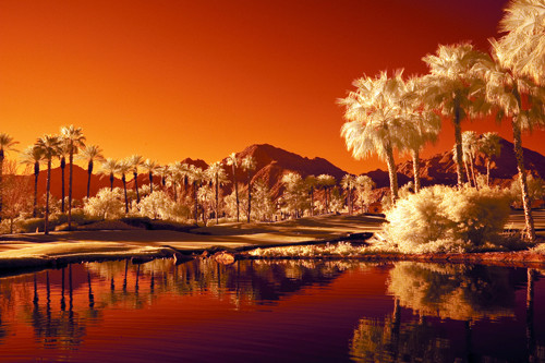 Infrared Palm Springs in Infrared Photography