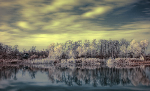 On the Shore in Infrared Photography