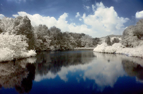 Bernheim in Infrared Photography