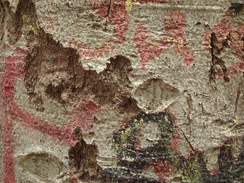 Distressed Bark Texture Pack