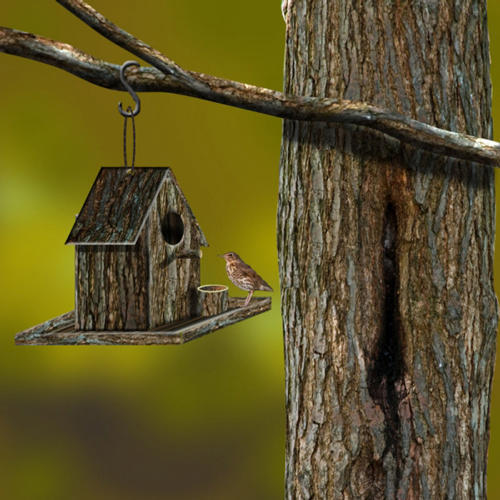 How To Create A Neat Bird House From Scratch