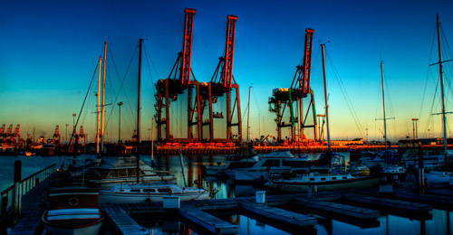 Monsters in the Port of Los Angles