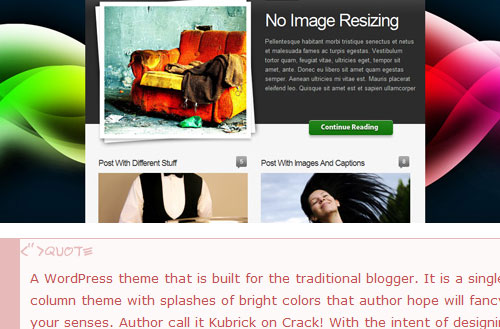 Rare WordPress Themes