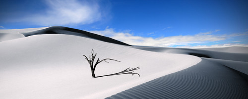 The Lonesome Dune By Dominic Kamp